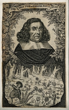 Robert Turner, doctor and translator