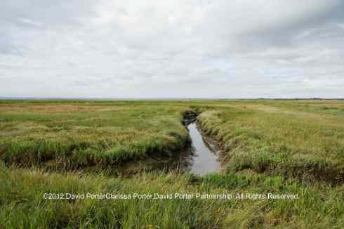 The North Kent Marshes