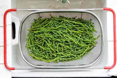 Cleaning Samphire Before Pickling